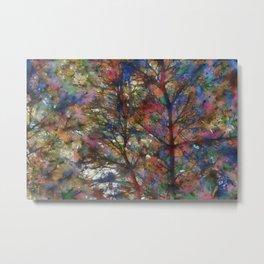 Sunshine and Pines PhotoArt Metal Print