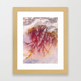 Puddle of tree... or mud Framed Art Print