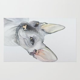 Cat Portrait #3 - Sphynx (2016) Rug
