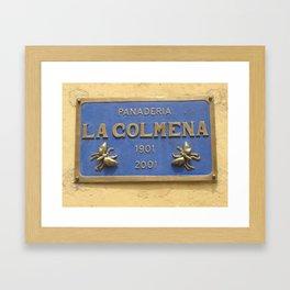 Wall Relief No. 3 in San Miguel de Allende, Mexico (2005) Framed Art Print