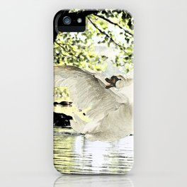 Swan Lake Part two. iPhone Case