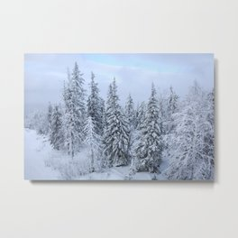 Snowy forest at the White Mountain Metal Print