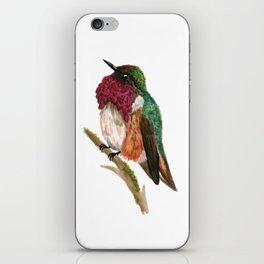 Wine-throated Hummingbird iPhone Skin