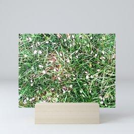 Petals on the grass Mini Art Print