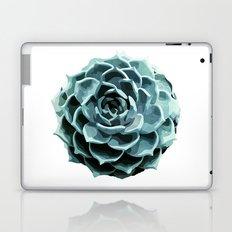 Succulent Echeveria II Laptop & iPad Skin