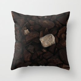 White stone on the gray stones, one of many, outstanding stone Throw Pillow