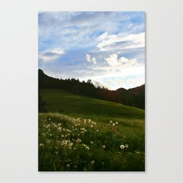 Morning Walk | Colorado Canvas Print