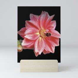 Savor Mini Art Print