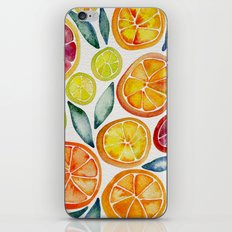 Sliced Citrus Watercolor iPhone & iPod Skin