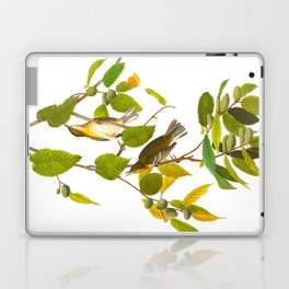 Autumnal Warbler Bird Laptop & iPad Skin