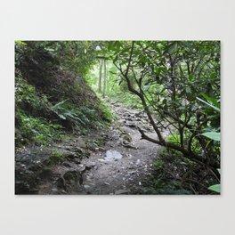 Magical Mountain Path Canvas Print