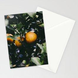 Roadtrip 3 Stationery Cards