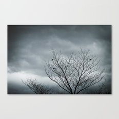 Your Coldness Canvas Print