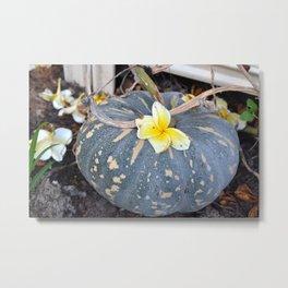 Japanese Pumpkin Metal Print