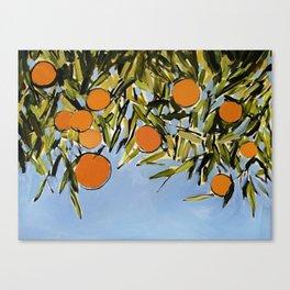 Orange Grove (Blue) Canvas Print