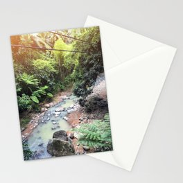 Imaginary Dinosaurs Live Here Stationery Cards
