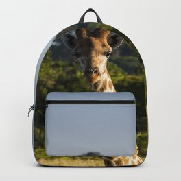 A Giraffe in the Wild Backpack