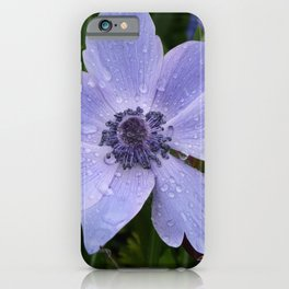 Purple flower with dew drops I Nature I Spring I Garden I Photography iPhone Case