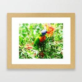 A Bird in the Bush Framed Art Print
