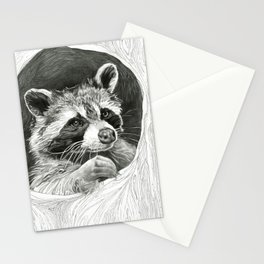 Raccoon In A Hollow Tree Drawing Stationery Cards