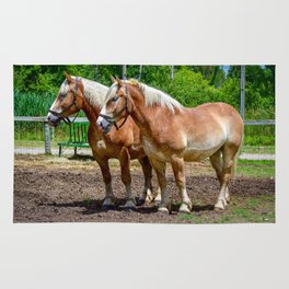 """""""Equine Duo"""" Rug"""