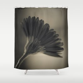 Gerbera black and white Shower Curtain
