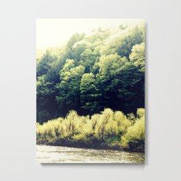 Sun-Kissed Muddy Water Metal Print