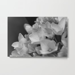 Boquet of black and white Metal Print