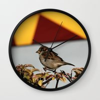 sparrow Wall Clocks featuring Sparrow by IowaShots