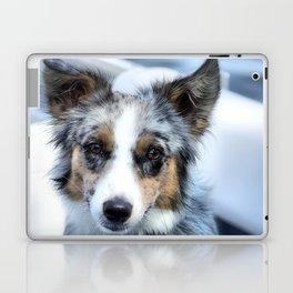 bEbE bLU Laptop & iPad Skin