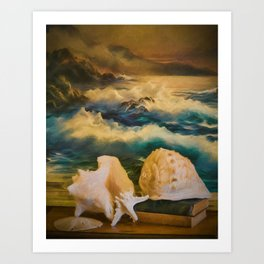 Sea Shell Still Life Art Print