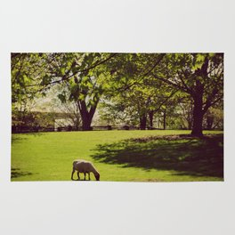 Sheep Grazing Rug