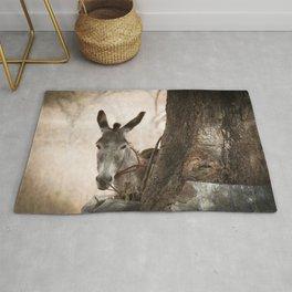 The curios donkey Rug