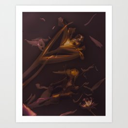 Lilly Lumen Art Print