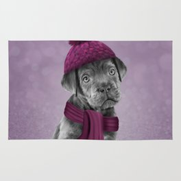 Drawing Puppy Cane Corso in hat and scarf Rug