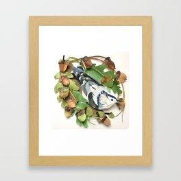 Acorn Nuthatch Framed Art Print