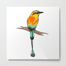 Motmot Bird Water Color & Ink Illustration Metal Print