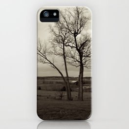 Tennessee iPhone Case