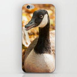 Autumn Goose iPhone Skin