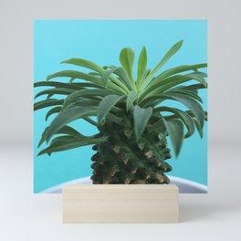 Euphorbia hypogaea(blue) Mini Art Print
