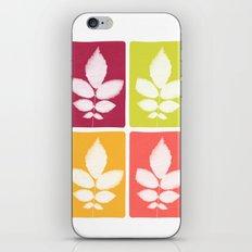 color block 4: bold iPhone & iPod Skin
