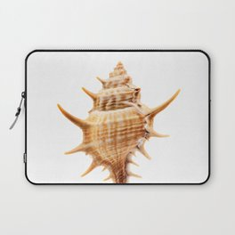 Thorn Conch Shell Laptop Sleeve
