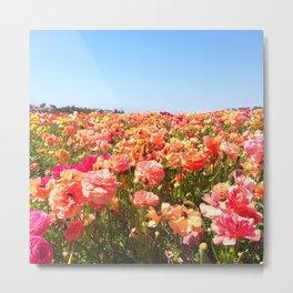 Flower Fields Fever Metal Print
