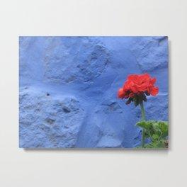 Red flower in Arequipa, Peru Metal Print