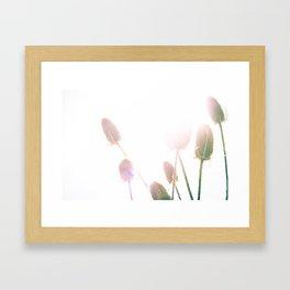 Bullrushes Framed Art Print