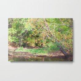 Hickory Ridge Pond Metal Print