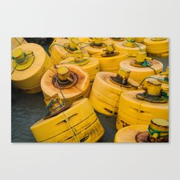 Yellow gathering Canvas Print