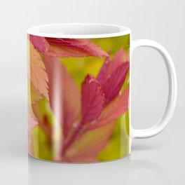 Orange Flame Spirea Coffee Mug