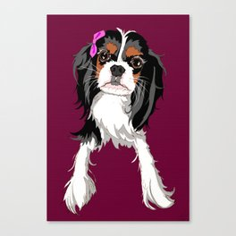 Tri-color Cavalier King Charles Spaniel Puppy Canvas Print