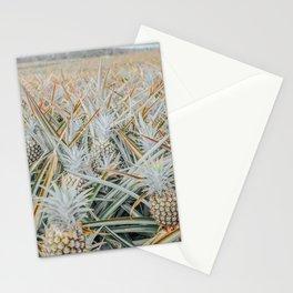 Maui Gold Pineapple Fields, Maui, Hawaii #3 Stationery Cards